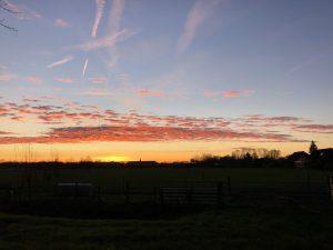 zonsopkomst Steenuiltje